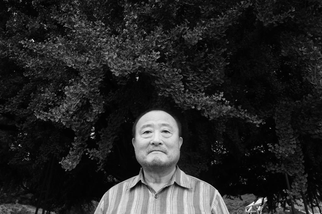 2019-07-28 11-18-반계리 은행나무_김진열_06_resize